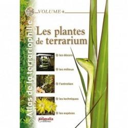 LES PLANTES DE TERRARIUM