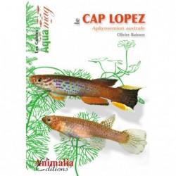 LE CAP LOPEZ (APHYOSEMION...