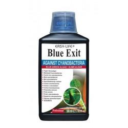 BLUE EXIT