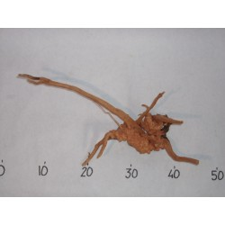 BRANCHY DRIFTWOOD - M size