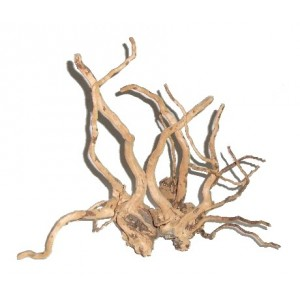 Branchy driftwood