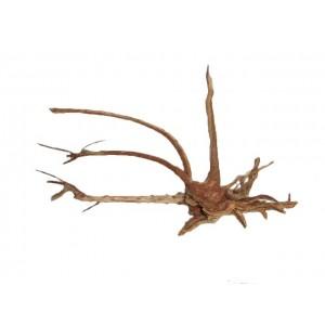 Finger driftwood