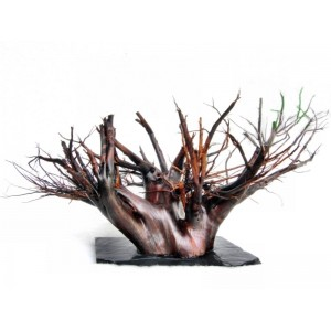 Moorkien driftwood