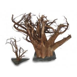 Driftwood on slate