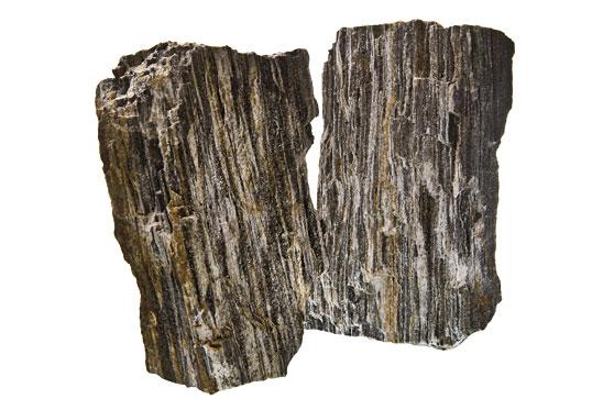 Forest stone, pierre pour aquarium
