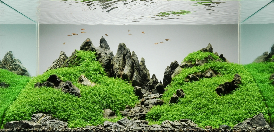 Mountainscape par Peter Kirwan