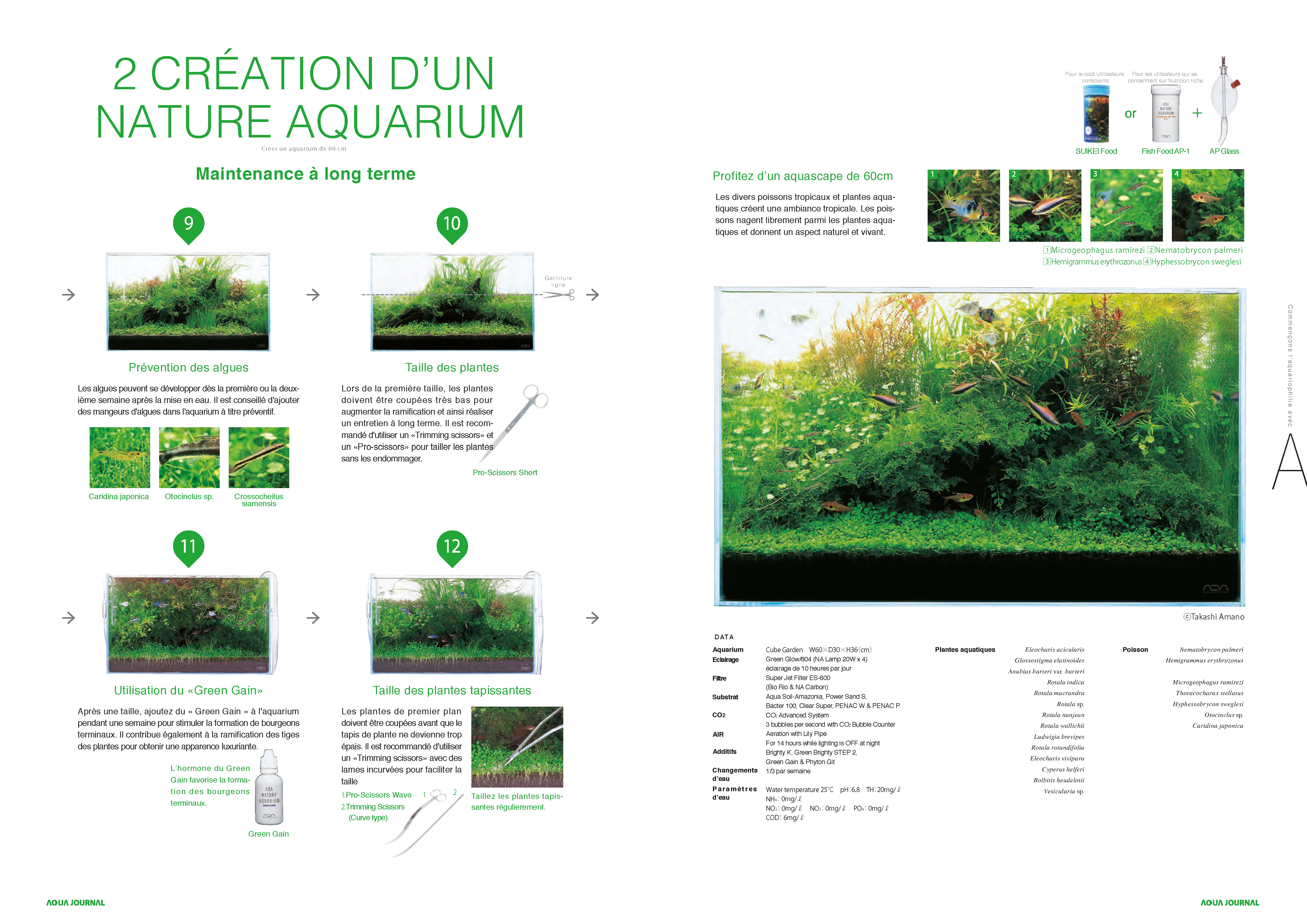 Aqua Design Amano - Aquarium pas à pas 2